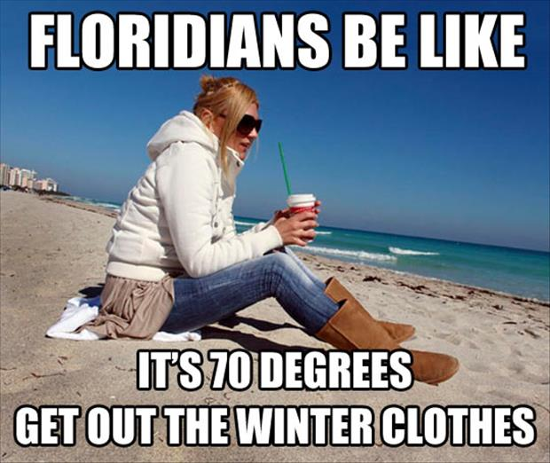 meanwhile-in-florida.jpg