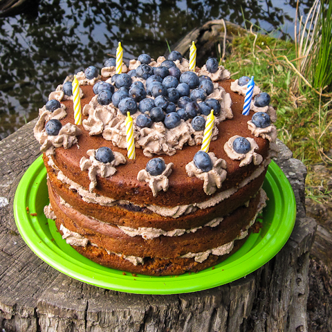 blueberry-gingerbread-cake-1.jpg